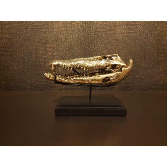 Gouden krokodillen schedel op zwart statief 23x15 cm