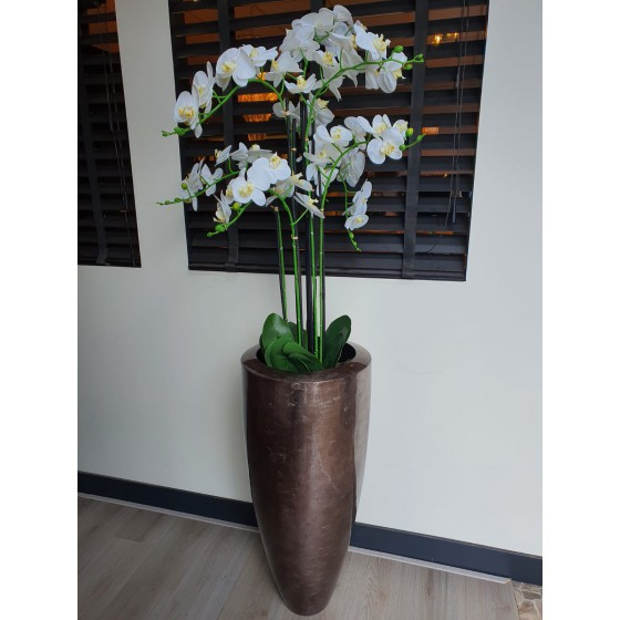 Vaas Herba SI 90cm shiny brown